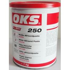 OKS 250 Metal İçermeyen Beyaz Montaj pastası (1 kg)