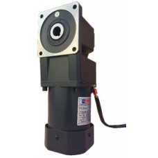 E1610-25-17C 25W 220 V AC Dik Açılı Redüktörlü Motor